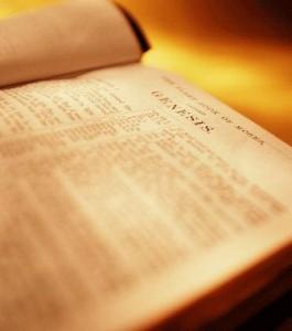 bible-265x300